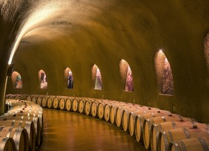 Wine barrels maturing
